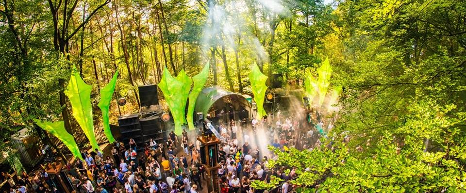 Into the Woods Festival