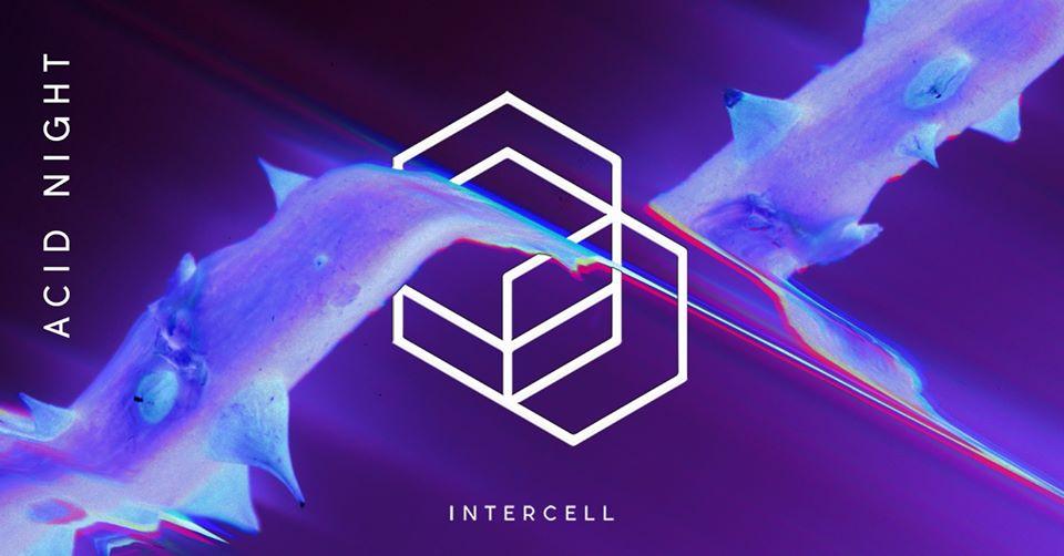 Intercell Acid Night